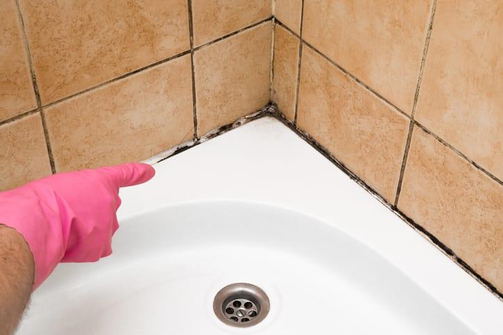 How To Get Rid Of Bathroom Mildew, Getting Rid Of Mold In Bathroom